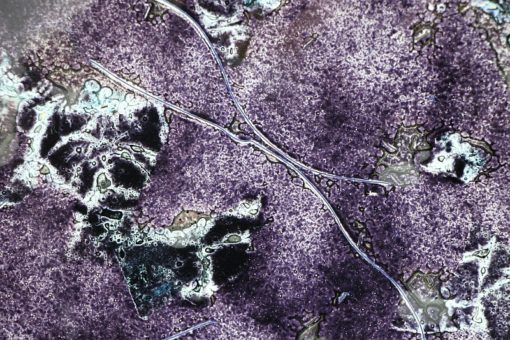 Glasschale Rund Metall schwarz 4